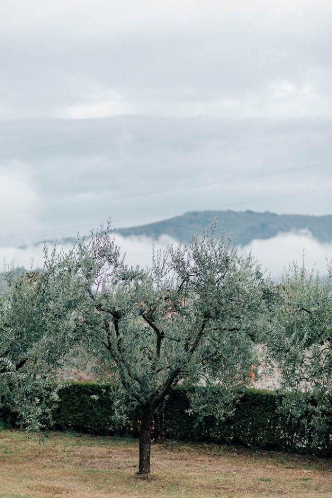 Villa Catureglio Tuscany Wedding View
